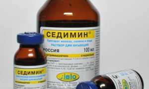 Седимин для поросят: инструкция по применению, противопоказания и побочные эффекты