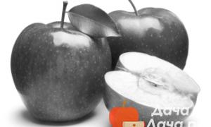 Арбуз Чарльстон Грей: описание и характеристика сорта, урожайность с фото