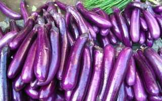 Баклажан «Длинный фиолетовый»: описание сорта, характеристики и отзывы