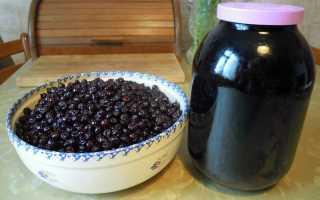 Плодово-ягодное вино: 4 лучших рецепта приготовления в домашних условиях