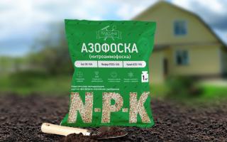 Азофоска: удобрение, применение для картофеля