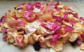 Вино из лепестков роз в домашних условиях: 3 простых рецепта приготовления