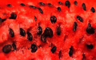 Можно ли есть косточки арбуза: польза и вред семян, применение