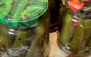 Болгарские огурцы на зиму: самые вкусные рецепты