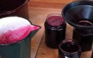 Можно ли хранить вино в пластиковых бутылках: правила и особенности
