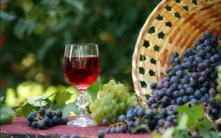 Вино из винограда Молдова: лучший рецепт приготовления в домашних условиях