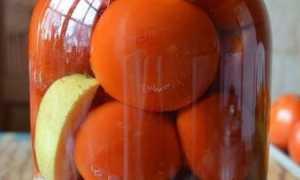 Помидоры по-немецки с яблоками: рецепты маринования с фото и видео