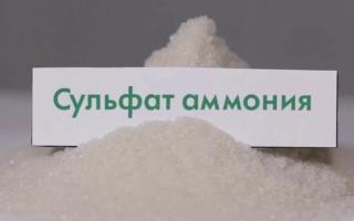 Удобрение сульфат аммония: применение на огороде