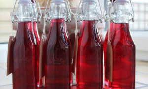 Пастеризация вина: правила проведения в домашних условиях и выбор температуры