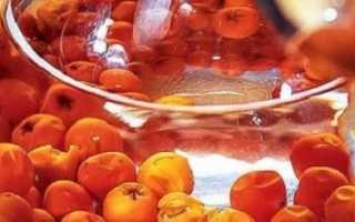 Рябиновое вино: 8 простых пошаговых рецептов приготовления в домашних условиях