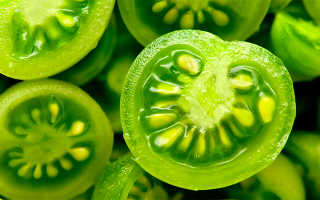 Сорта зеленых помидор: описание и характеристики, урожайность с фото