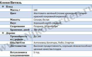 Яблоня Витязь: описание сорта и характеристики, урожайность и история селекции