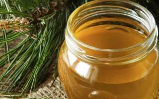 Мед с олеорезином: полезные свойства, противопоказания, польза и вред | Блог интернет-магазина «Мед России»