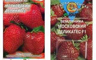 Клубника Московский деликатес: описание сорта и характеристики, посадка и уход
