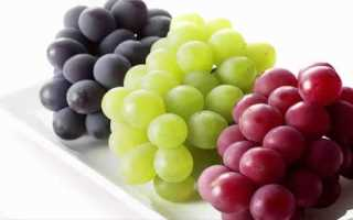 Морозостойкие (зимостойкие) сорта винограда: какие лучшие, как выбрать для средней полосы России, критерии выбора морозостойкого сладкого сорта