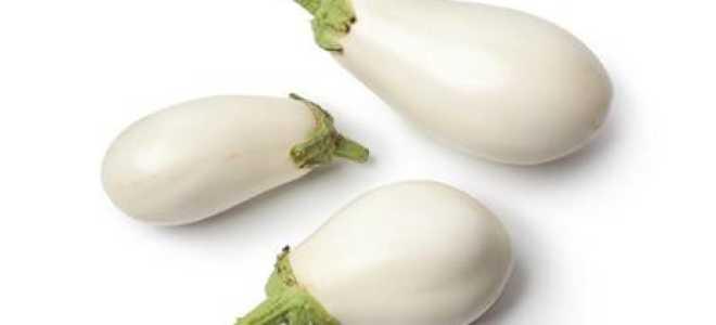 Белый баклажан: описание сортов, преимущества и недостатки с фото
