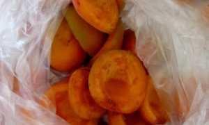 Как хранить абрикосы в домашних условиях на зиму, чтобы не испортились