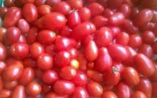 Томат Семь сорок: характеристика и описание сорта, урожайность отзывы фото кто сажал