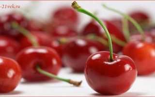 Вишня: польза и вред для здоровья, лечебные свойства и противопоказания для организма