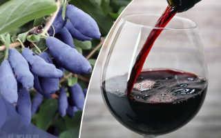 Вино из жимолости в домашних условиях: простой рецепт приготовления