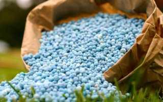 Подкормка капусты в открытом грунте: чем удобрять, какие удобрения лучше