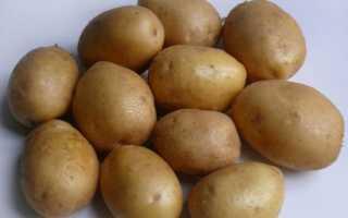 Картофель Джелли: характеристика и описание сорта, выращивание с фото