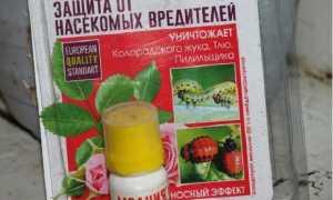 Молния от колорадского жука: инструкция по применению