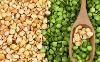 Горох: польза и вред растения для здоровья человека