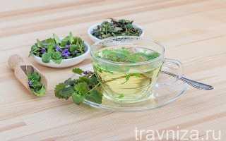 Какие травы можно использовать для приготовления чая в домашних условиях