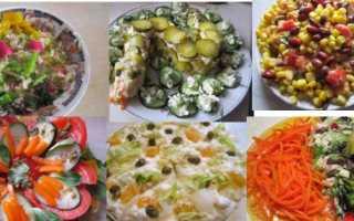 Сорта оливок (маслин): описание и характеристики лучших, как выбрать в магазине