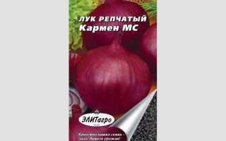 Лук Кармен: описание и характеристика сорта, выращивание и уход с фото