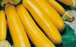 Желтые кабачки: описание лучших желтоплодных сортов с фото и видео
