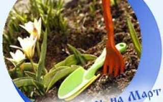 Лунный календарь огородника на март 2020: посадочные дни для посева