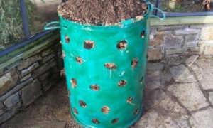 Выращивание клубники в мешках: пошаговая инструкция, нюансы технологии