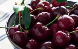 Черешня Ипуть: описание сорта и опылители, выращивание и уход, схема посадки