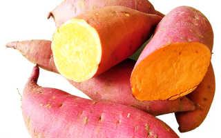 Батат: сладкий картофель — польза и вред, выращивание и уход с фото