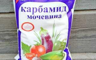 Мочевина для огурцов: как подкормить удобрением на огороде, можно ли