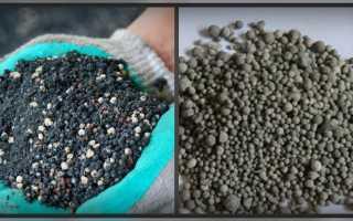 Фосфорные удобрения: что это, и какие виды бывают?