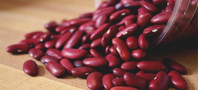 Фасоль красная: польза и вред для организма человека