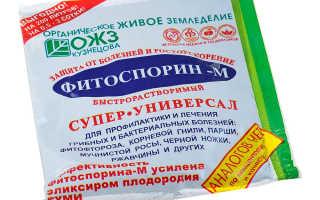 Удобрение «Фитоспорин»: применение на огороде для капусты, картофеля и томатов