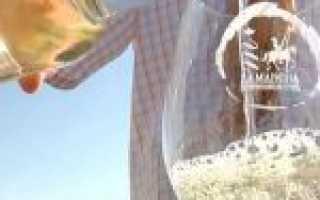 Сорт винограда Айрен: описание и характеристики, посадка и уход, вкусовые особенности