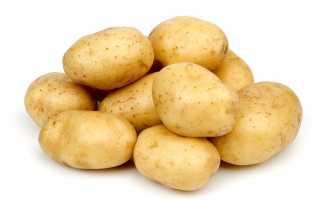 Картофель Гала: описание и характеристика сорта, выращивание и уход с фото
