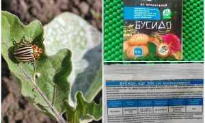 Бусидо от колорадского жука: инструкция по применению