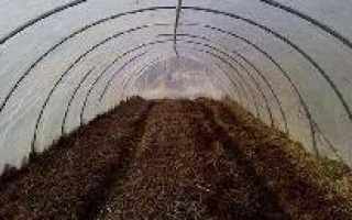 Обеззараживание почвы в теплице: признаки заражения, сроки и правила обеззараживания, описание технологии, советы и рекомендации