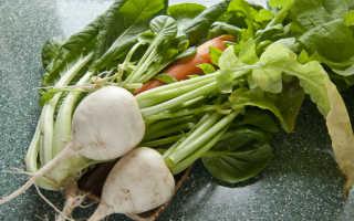 Дайкон Малиновый нектар: описание сорта, выращивание и урожайность с фото