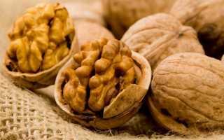 Польза грецких орехов: лечебные свойства и противопоказания для организма