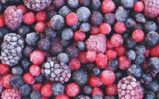 Как сохранить землянику на зиму без варки: подготовка ягод, сушка и замораживание