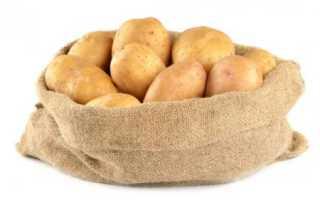 Картофель Сказка: описание и характеристика сорта, урожайность с фото
