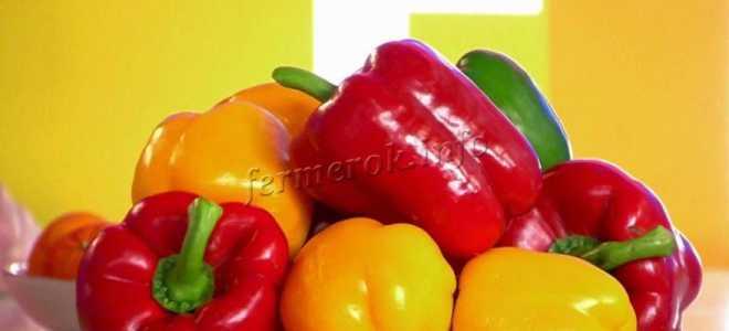 Чем подкормить перцы после высадки в грунт во время цветения и плодоношения
