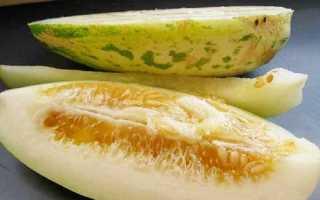 Огурец: что это такое, как есть, выращивание и уход за огурцом скрещенным с дыней, когда созревает плод и когда его можно собирать, сорта, фото и отзывы